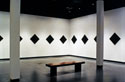 Wake exhibition (Dupont II Gallery - Black Ground paintings), Delaware Center for Contemporary Art
