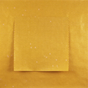 Yellow Pigment Black Code Diptych